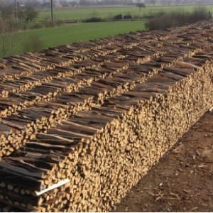 Brennholzmaschinen günstig kaufen